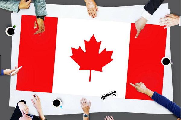 Hồ sơ định cư Canada bao gồm những gì?
